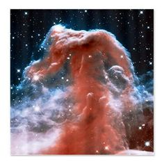 Horsehead Cloud Nebula Shower Curtain All-over Print Shirts, Shower Curtains, Blankets, & more @ http://cafepress.com/freshuniverse