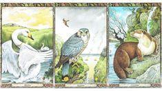 Vajon neked mit üzen a személyes kelta tarot kártyád? Érdemes a tanácsokat megfogadni. Erika, Mantra, Feng Shui, Painting, Art, Art Background, Painting Art, Kunst, Paintings