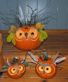 """Forest Owls"" pumpkins by Pam C., Anchorage, AK"