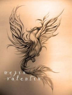 Sketches of tattoos. - Sketches of tattoos. Tattoo artist Valentin Mez … Sketches of tattoos. Phoenix Tattoo Feminine, Phoenix Bird Tattoos, Phoenix Tattoo Design, Feather Tattoos, Phoenix Tattoo Girl, Phoenix Tattoo Sleeve, Lotus Flower Tattoos, Rising Phoenix Tattoo, Phoenix Design