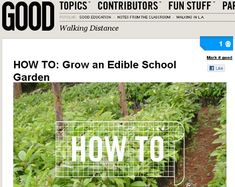 Alice Waters and Jamie Oliver are two chefs noted for their healthy approach to growing and preparing food. They have brought the idea of edible gardens to schools. There are multiple websites that provide information on edible school gardens.