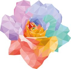 rose low poly multicolor - laboitedelou