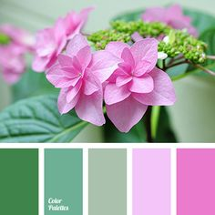 Very delicate, tender palette like the first spring color. Soft pink, fuchsia harmonize and look natural with mint, khaki and fresh green. This composition.