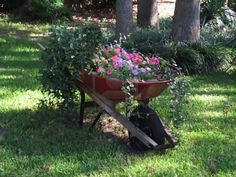 My old red wheelbarrow has turned into a flower garden...old doesn't mean useless!