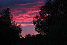 A calm,pink sunset