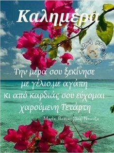 Beautiful Pink Roses, Good Morning, Google, Birthday, Buen Dia, Bonjour, Good Morning Wishes