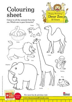Coloring sheets for kids, colouring sheets, zoo activities preschool, nurse Zoo Activities Preschool, Animal Activities For Kids, Friend Activities, Nursery Activities, Book Activities, Sequencing Activities, Dear Zoo Eyfs, Dear Zoo Book, Zoo Animal Coloring Pages