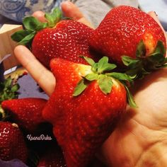 Strawberry cocktail with kisses pledge of excellent week. Isn't that so!   P Mood for kisses ...  Клубничный коктейль с поцелуями залог отличной недели.. Не правда ли!  Поцелуйное настроение ...   foto(c)ksanaduks #TheArtOfPlating#talnt…