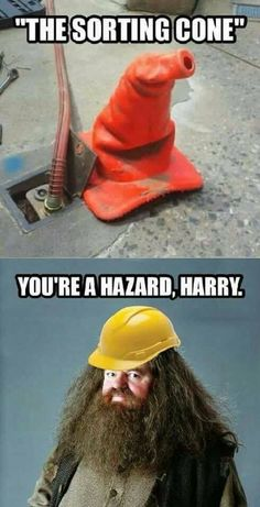 Harry: Me... I can't be a hazard... I'm just Harry....