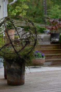 plättar-i-luften Outdoor Flowers, Outdoor Planters, Garden Planters, Outdoor Gardens, Love Garden, Garden Shop, Garden Art, Garden Shrubs, Garden Trellis