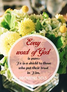 Every word of God is pure; He is a shield to those who put their trust in Him.  ~Proverbs 30:5