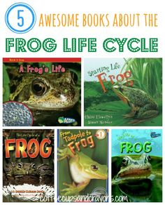 5 awesome books about the Frog Life Cycle for kids! Must do this since we have tadpoles in the kiddie pool.