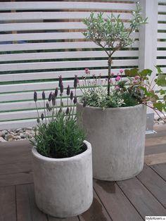betongkrukor,trädgård,trädäck,sommar