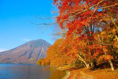 [HD]Autumn in Nikko 秋の日光・中禅寺湖の紅葉 日本の紅葉  紅葉便り