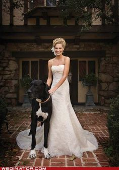 Toto loves this one- a bride with her Great Dane.