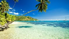 #Turismo #hawaii #USA #destinos https://revistavivelatinoamerica.com/2016/12/21/hawaii-estados-unidos-de-america/