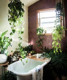 If you are fans of a fresh and colorful interior decor, using indoor plants to decorate your interior can be one of easiest ways to make a home feel more lived-in and relaxed. Adding large indoor p… Bathroom Plants, Garden Bathroom, Bathrooms With Plants, Room With Plants, Bathroom Inspiration, Bathroom Ideas, Bathroom Goals, Bathroom Colors, Budget Bathroom