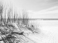 "43 Likes, 1 Comments - Diana Krumina (@artprintsbydiana) on Instagram: ""Beach My home town Liepaja  #liepāja #liepaja #liepajabeach #latvija #latvia #europe #beach…"""