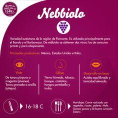 #ViernesDeUvas #Nebbiolo #vino #VinoTinto #DisfrutarVino #Maridajes #Temperatura de #Servicio #Varietal #Uva