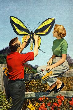 Title: Childless Couple in Silicon Valley (Collage/ mixed media/ digital art / butterfly / retro photography)