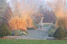 arundinacea 'Sky Racer' Country Gardener: November color - fall is not over yet November Colors, Ornamental Grasses, Tall Grasses, Garden Photos, Private Garden, Autumn Garden, Landscaping Plants, Dream Garden, Perennials