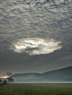 """""""unicorn-meat-is-too-mainstream:   strange clouds  Various cloud formations might be one of the most beautiful and romantic sights in nature, but these masses of liquid droplets is also a complex and scientifically interesting phenomena.   """""""