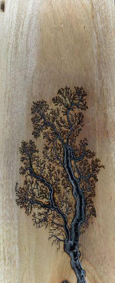 """Lichtenberg Figures Wood/Gold 26""""-8"""""""