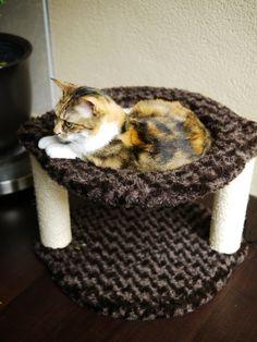 Cat hammock | Animals | Pinterest #cat #hammock - Catsincare.com