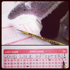 Good luck on finals, Anteaters!  #UCIrvine #UCI #finals