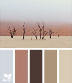 Barren Tones: Cloudy Sky Blue, Sunset Red, Chocolate Brown, Taupe and Tan