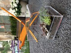 #niwabox #coffe #table #designtrasparente #plexiglass #plexi #plex #green #home #decor #living #office #kitchen