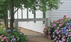 A longtime mainstay on ranches, hog wire panels also are an affordable, low-profile material to use for garden fences, gates, and trellises—with, dare we say, a certain elegance? Keeping hogs is not a prerequisite.