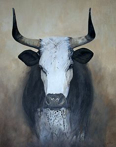 Nguni - this is gorgeous. Makes me miss Namibia even more! Cow Art, Horse Art, Potnia Theron, Cow Pictures, Bull Cow, South African Art, Farm Art, Cow Painting, Rind