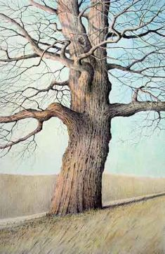 Buson's Tree by Allan Servoss in coloured pencil Pencil Drawing Tutorials, Pencil Drawings, Art Drawings, Drawing Ideas, Colored Pencil Tutorial, Illustration, Coloured Pencils, Color Pencil Art, Colorful Drawings