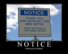 Thanks for noticing.