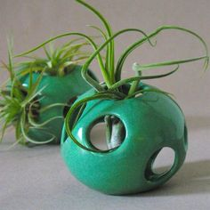 Nicholas Newcomb: Air Pod Plant Holder Green, at 11% off!