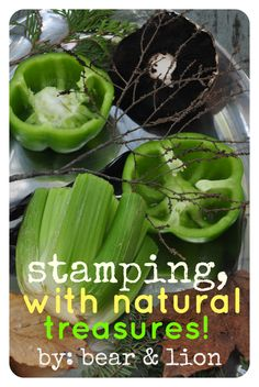 stamping with food & natural treasures! such a fantastic summer project to do outside! from: bear & lion
