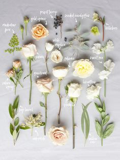 Bouquet Breakdown by Blushing Rose Floral March Wedding Flowers, Neutral Wedding Flowers, Blush Flowers, Flower Bouquet Wedding, Floral Wedding, Trendy Wedding, Diy Wedding, Wedding Flower Arrangements, Types Of Flowers