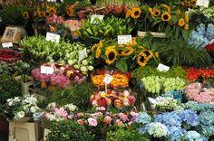 Bloemenmarkt - Amsterdam
