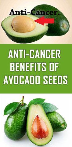 Anti-Cancer Benefits of Avocado Seeds