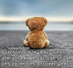 Fifa, Hamburger Sv, Tu Me Manques, Afrikaans, Cute Quotes, Teddy Bear, Animals, Owls, Shell