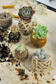 Kokedamas: Decorar con plantas sin maceta [FOTOS]