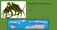 Amphiptere (Amphipterus amphipterus)  Dragons is are Amphipteres, flying-serpentine, legless, 1 pair of wings.  Dragons are Native to Northern Hemisphere in North America, and Eurasia.  #Fantasy #Serpent #Flyingserpent #Dragon #Dragons #Myth #Mythology #Native #Range #Map #Maps #Serpentine #Winged #Wings