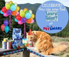 The Farm cats celebrate Natural Balance @PetSmart #PetSmartStory #AD