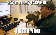 Say It To My Face Bro, I Deer You funny meme lol humor funny pictures funny meme funny photos funny images hilarious pictures Funny Shit, Funny Cute, The Funny, Funny Memes, Funny Stuff, Funny Captions, Super Funny, Silly Meme, Kiss Funny