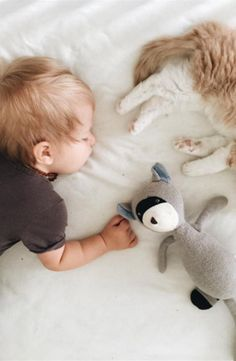 Sleeping babe and kitty so sweet. No catnap is complete without a naptime buddy from Noble Carriage by Hazel Village. Max the Raccoon is handmade, fair-trade, and made from organic cotton. Great baby shower gift idea for the mindful mom-to-be.