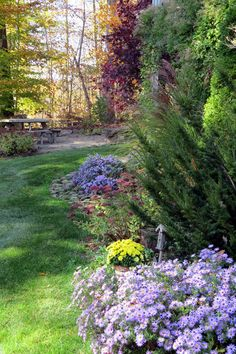 Too Soon for Fall?   Fine Gardening
