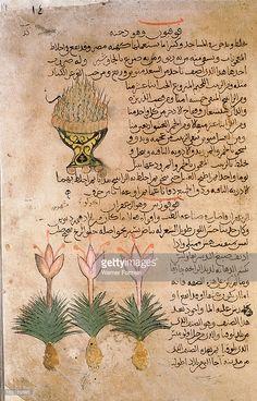 Folio 14r of the Arabic version of Dioscorides De Materia Medica, Bowl of burning kyphi (Egyptian incense as well as aromatic remedy) and Crocus sativus (saffron). Islamic. 987 990. Samarkand.