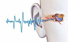Побороть шум в ушах и головные боли: рецепт известного австрийского доктора Рудольфа Бройса