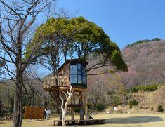 treehouses by takashi kobayashi, japan - designboom | architecture & design magazine